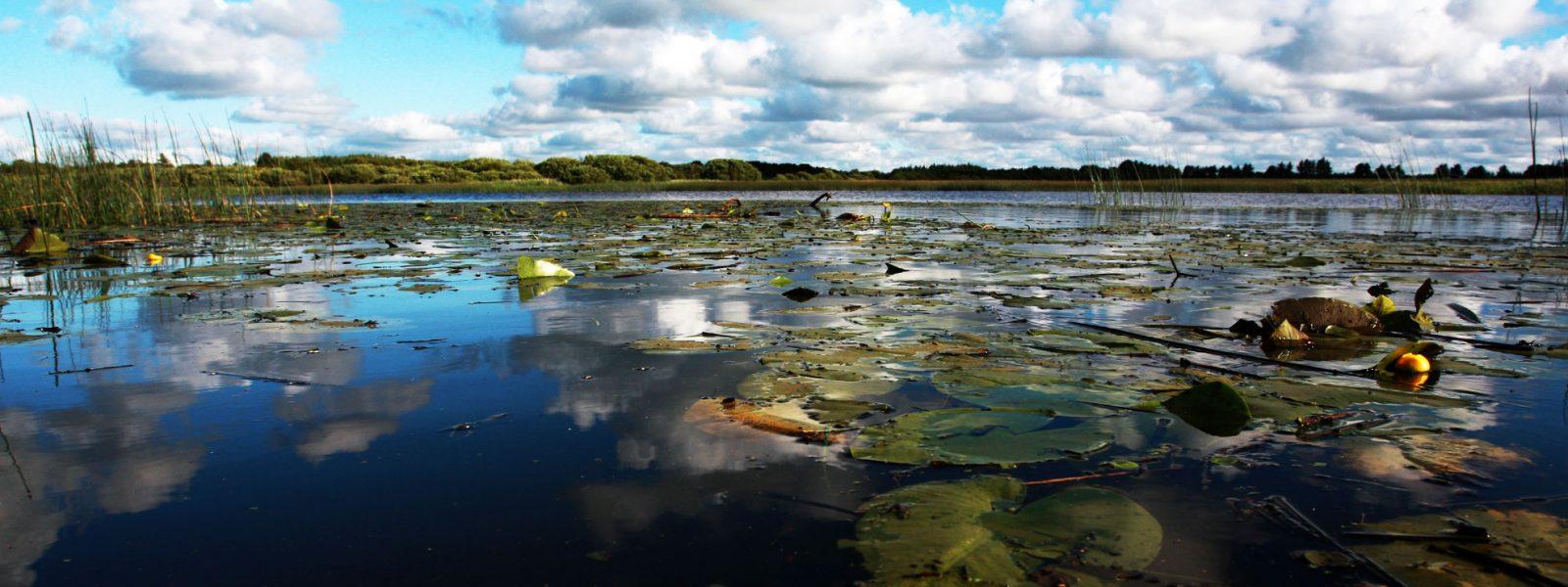Karlsgårde Sø
